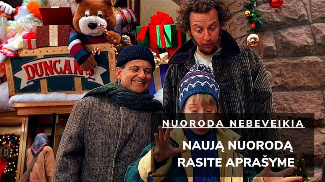 VIENAS NAMUOSE 2: PASIKLYDĘS NIUJORKE 1992 (HOME ALONE 2: LOST IN NEW YORK) Lietuviškai online